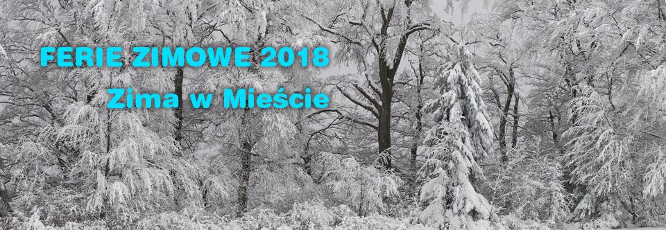 Ferie zimowe 2018 wnaszym Obserwatorium