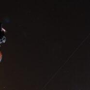 Wieczór zgwiazdami – Perseidy 2021